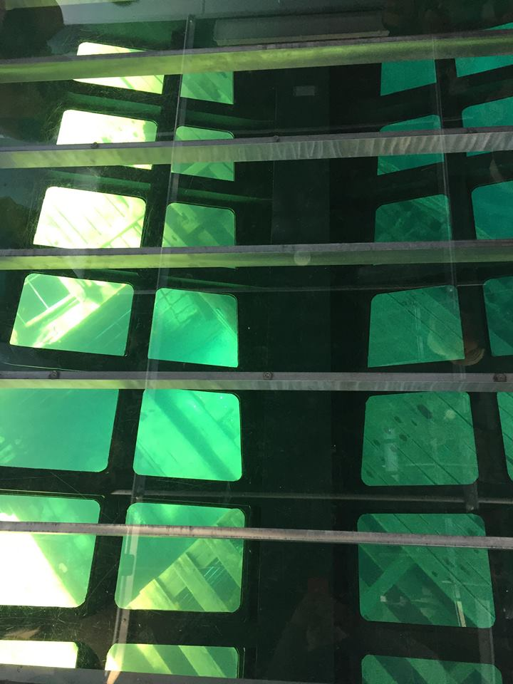 a view of Sweepstakes through the glass bottom of the Blue Heron 8, showing a hatch.