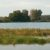 Image of wetlands
