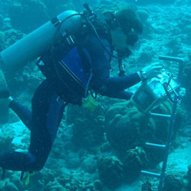 Oceanographer in diving gear